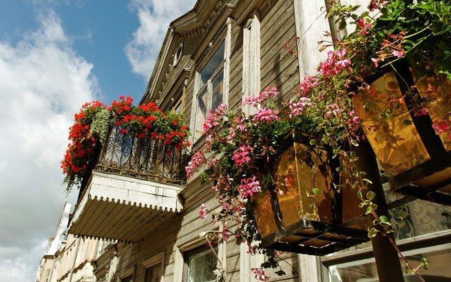 balkon bepflanzen balkon bepflanzen praktische tipps und. Black Bedroom Furniture Sets. Home Design Ideas