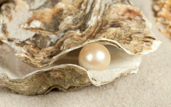 Perlen und ihre wundersamen Arten