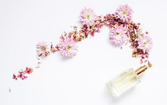 Die Sommermonate bringen nicht nur frischen Wind mit sich – sondern auch wunderschöne Düfte. Wir stellen Ihnen die schönsten neuen Parfums der Saison vor.
