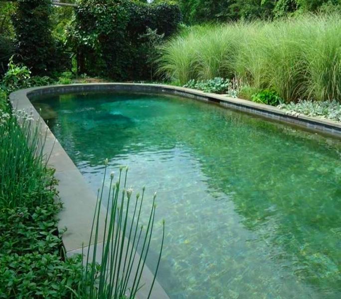 Ein Garten in Grün