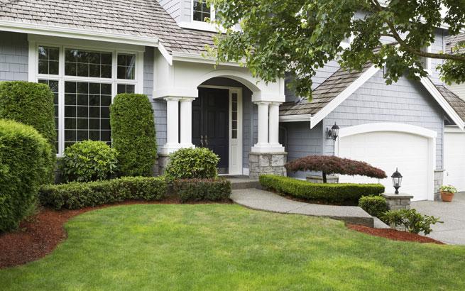 koniferen so machen die heckenpflanzen eine gute figur im garten. Black Bedroom Furniture Sets. Home Design Ideas