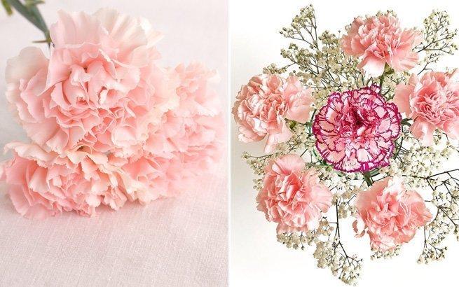 Brautstrauss Welche Blumen Passen Zum Schonsten Tag Im Leben