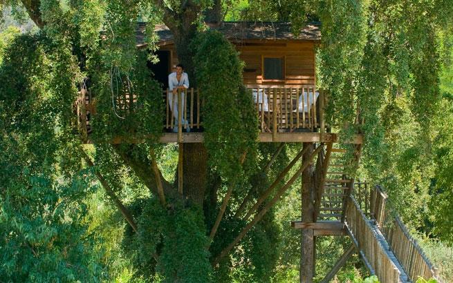 Baumhaus Frankreich übernachten im baumhaus das etwas andere hotel