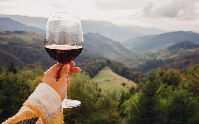 Frau hält Glas vor Berge: Die schönsten Weinwanderungen der Schweiz