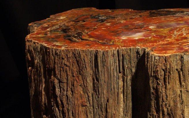 Edelstein Mobel Exklusivstucke In Der Form Von Versteinertem Holz